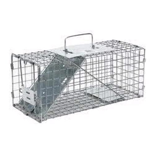Where to find 12  Single Door Animal Trap in Dallas