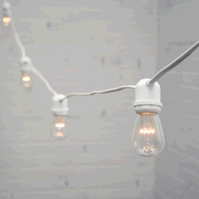 Where to find STRING LIGHTS LED WHITE CORD in Dallas