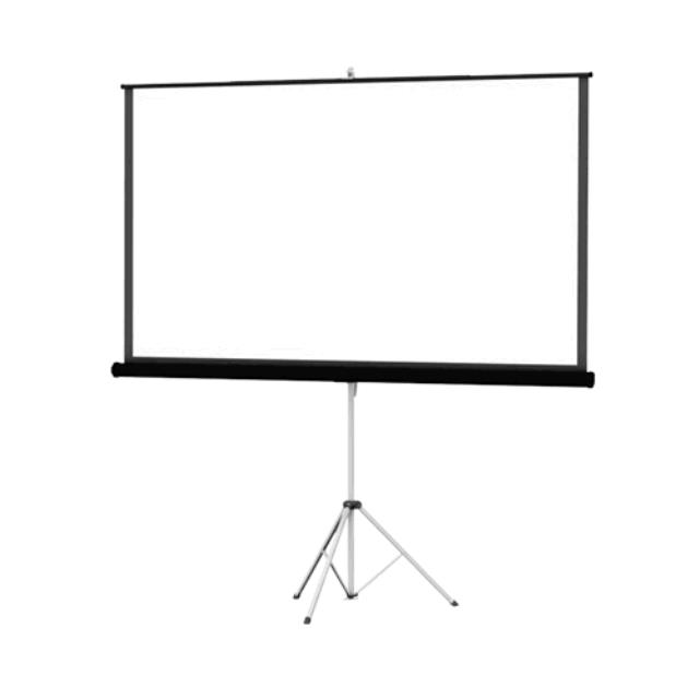Where to find 69  x 92  SCREEN in Dallas