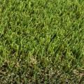 Rental store for 12  X 17  ARTIFICIAL GRASS GREEN in Dallas TX